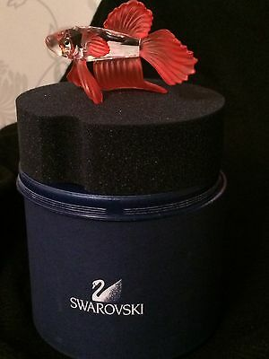 Swarovski Siamese Fighting Fish (Red)
