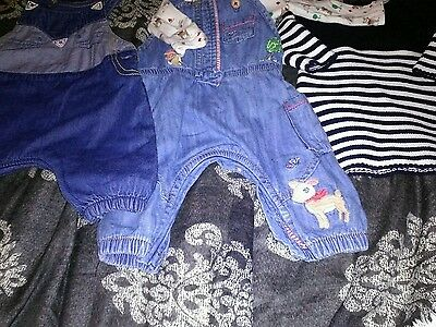 Baby girls up to 3 months bundle of Next outfits.