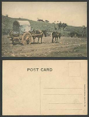 North China Old Hand Tinted Postcard Country Travel, Chinese Donkey or Mule Cart