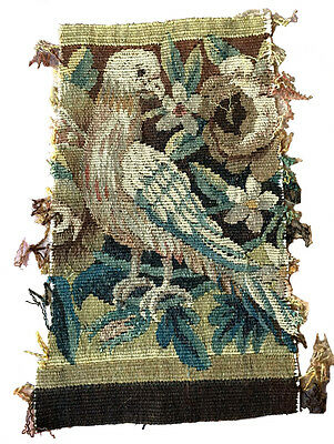 A Cute Antique Tapestry Fragment Depicting a Bird