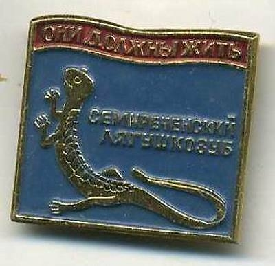 old Central Asian salamander metal badge pin red book pages