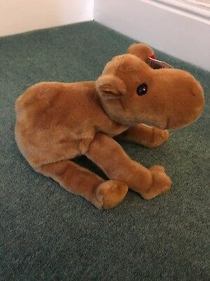 TY Humphrey Beanie Baby Buddy Rare and Collectible