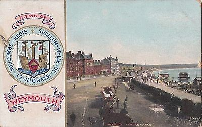 Old Postcard Coat Of Arms Weymouth Pier Dorset 1900S