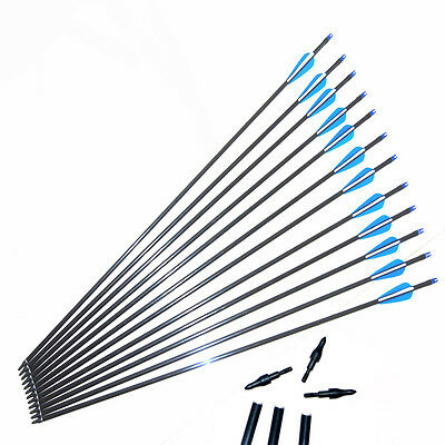 12PK Archery Hunting  Fiberglass Arrows Screw Tips for compound or recurve bow