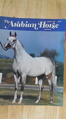 THE ARABIAN HORSE  JOURNAL COLLECTION OF  6 Magazines from---1979