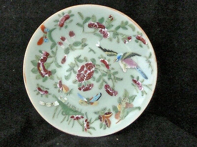 Chinese 19th Century Famille Rose Plate - Birds and Butterflies