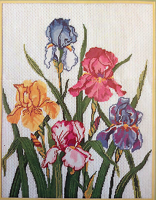 Something Special Needlepoint Kit Iris Opened, Complete