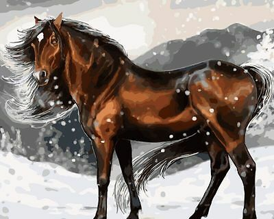 DIY Paint By Number 16*20inches kit Oil Painting Strong Horse On Canvas 1237