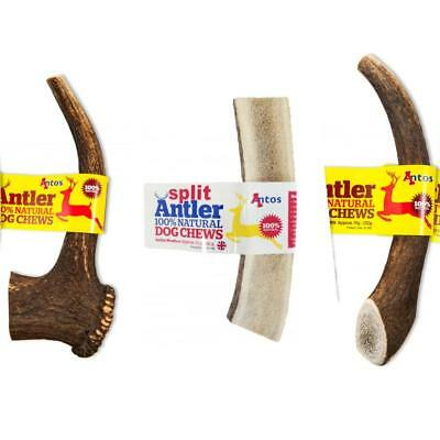 Antos Dog Puppy Antler Whole Split Chew Treat Long Lasting
