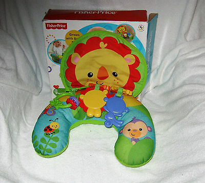 Fisher-Price Cozy Fit Playtime Tummy Wedge