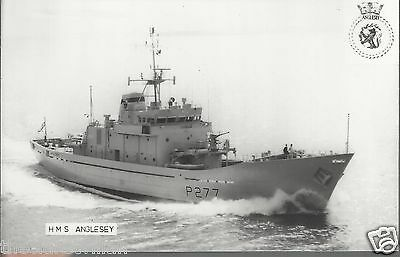 HMS Anglesey P277  Plain Backed Postcard with Ship's Badge Emblem