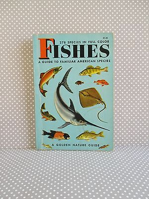 Vintage Fishes Guide 278 Species in Full Color Golden Nature 1955