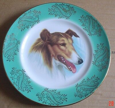 Lovely Collectors Plate Showing A Rough Collie