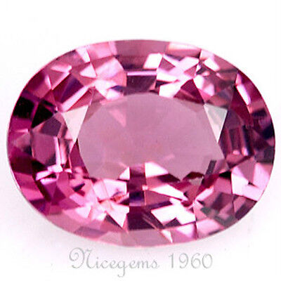 Certified Oval~1.51 Cts Pink Color Natural Spinel Ceylon Unheated