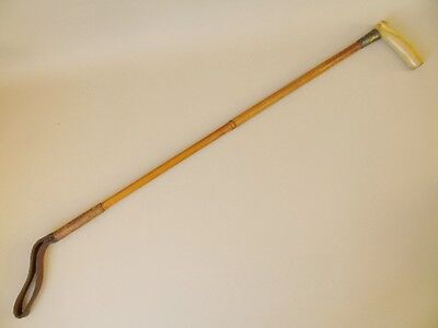 Antique Hunting Riding Crop Hounds Head Handle