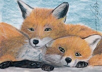 ACEO original pastel drawing  red fox puppys wildlife by Anna Hoff