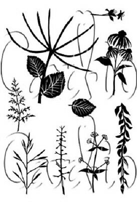 Card-io Botanicals 1 Clear Stamps CDCCSTBOT-01