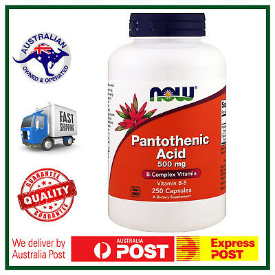 Pantothenic Acid 500mg 250 Capsules by NOW Foods - BIG BOTTLE VALUE B-5 Vitamin