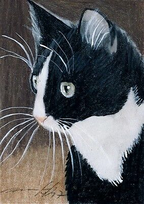 ACEO original pastel drawing tuxedo cat by Anna Hoff