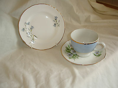 Vintage Mix And Match  Bone China Trio With Blue Floral Design