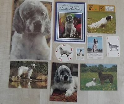 ENGLISH SETTER postcards, greeting cards, 5 playing cards, dog collection