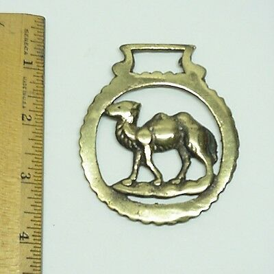 Brass Horse Medallion Camel Saddle Decor Ornaments Equestrian