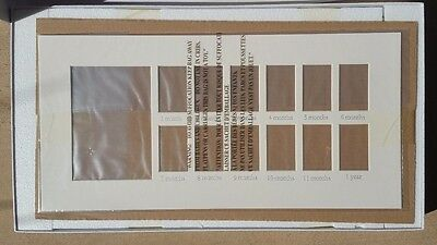 Pottery Barn Kids ~ Silver Leaf First Year Frame ~ 5 X 7 ~ 2 X 3