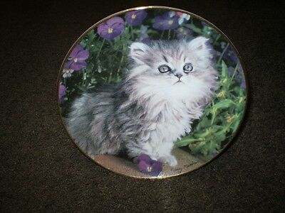 Franklin Mint Limited Edition Fine Porcelain Persian Kitten Plate ~ Purrfection