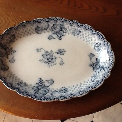 Attractive Oval porcelain Plater
