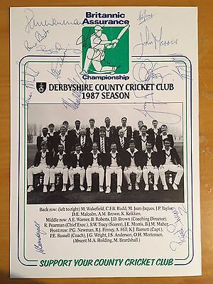 1987 Derbyshire Signed team Britannic Assurance card x 14 members of squad