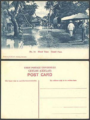 Ceylon Old Postcard Flood Time Grand Pass Flooded Street Scene Flooding Palms 10