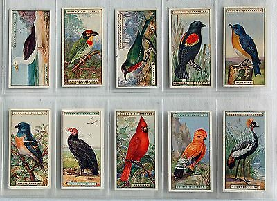 Ogdens Foreign Birds - 1924 – 50/50 Cards – Vg/excellent Condition