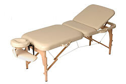 Portable Massage Couch Table Beauty Therapy Couch 2 Section Wood + Cover Bag