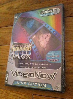 America's Funniest Home Videos Video Now PVD Crazy Cats Kids Being Naughty NEW