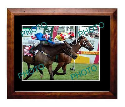 Elvstroem 2004 Caulfield Cup Win Large A3 Photo