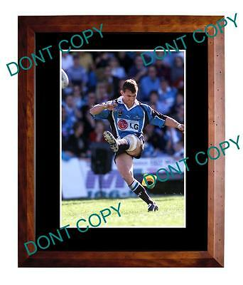Mat Rogers Cronulla Sharks Rugby Champion Large A3 Photo 2
