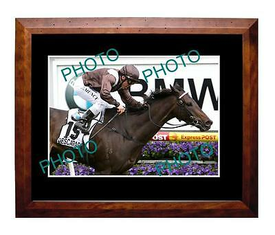 Descarado 2010 Caulfield Cup Win Large A3 Photo