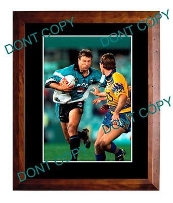 Andrew Ettingshausen Cronulla Sharks Rugby Champion Large A3 Photo 2