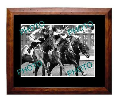 Tawrrific 1989 Melbourne Cup Win Large A3 Photo
