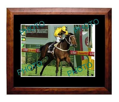 Northerly 2002 Caulfield Cup Win Large A3 Photo