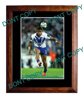 Ben Barba Canterbury Bulldogs Star Large A3 Photo 2