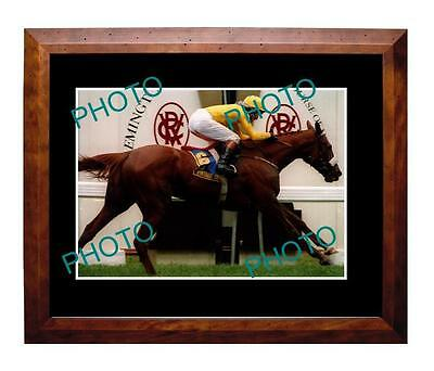 Vintage Crop 1993 Melbourne Cup Win Large A3 Photo