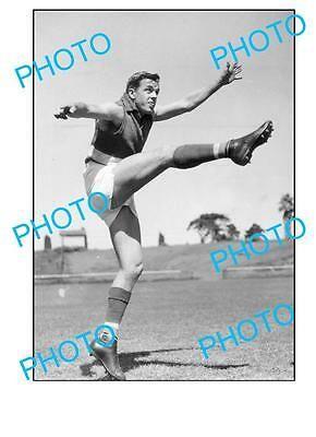 Footscray Fc Legend Ted Whitten Large A3 Photo 1