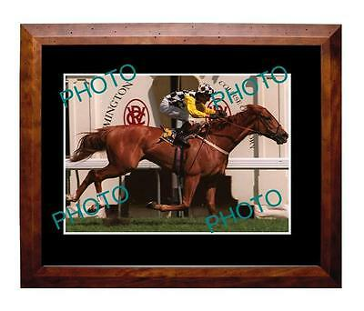 Saintly 1996 Melbourne Cup Win Large A3 Photo