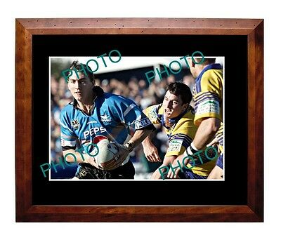 Mat Rogers Cronulla Sharks Rugby Champion Large A3 Photo 1
