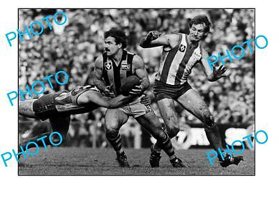 Hawthorn Fc Legend Leigh Matthews Large A3 Photo