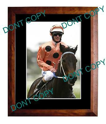 Black Caviar, Horse Racing Champion A3 Large Photo 1