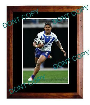 Ben Barba Canterbury Bulldogs Star Large A3 Photo 1