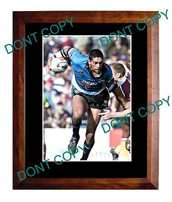 David Peachey Cronulla Sharks Rugby Champion Large A3 Photo 2