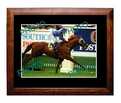 Jeune 1994 Melbourne Cup Win Large A3 Photo